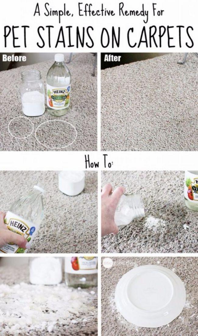 Como limpiar las manchas de la alfombra | Pinterest | Como quitar ...