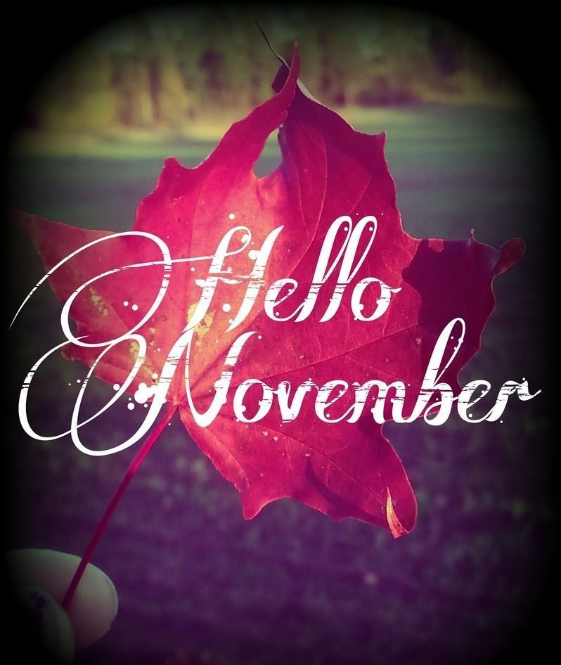 Hello November Images #hellonovembermonth Hello November Images #hellonovember Hello November Images #hellonovembermonth Hello November Images #hellonovembermonth Hello November Images #hellonovembermonth Hello November Images #hellonovember Hello November Images #hellonovembermonth Hello November Images #hellonovembermonth