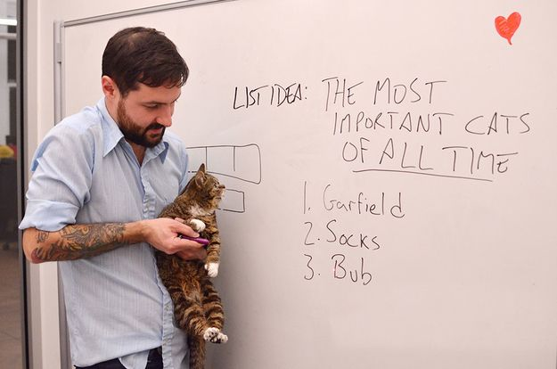 """""""This needs a lot of work."""" 
