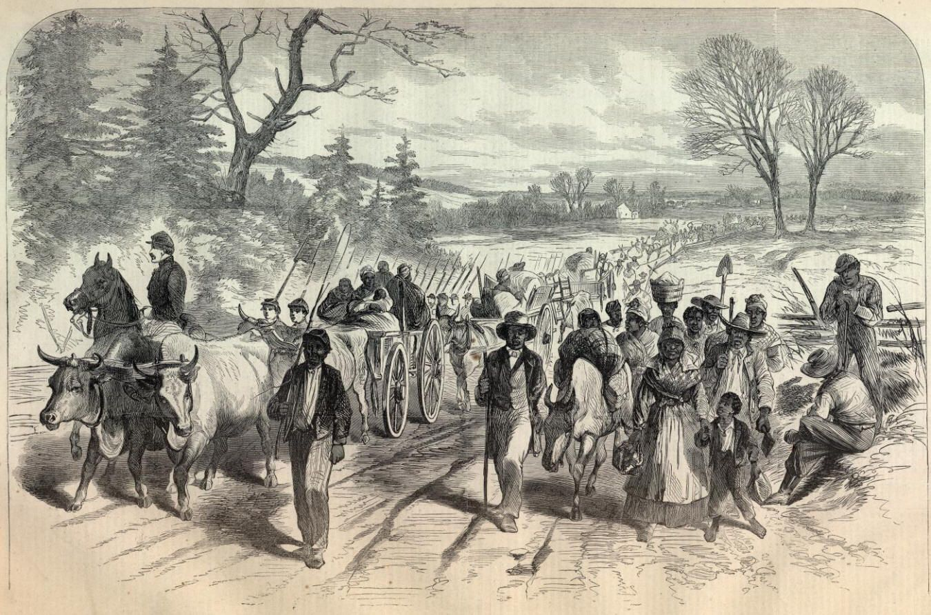 """""""Freed Negroes"""" 
