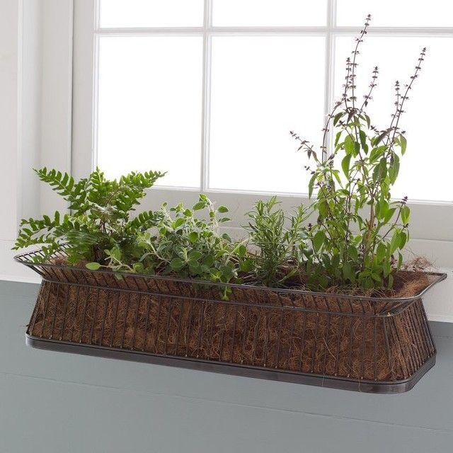 Indoor Window Box Google Search Indoor Planters Planters Indoor Window Planter