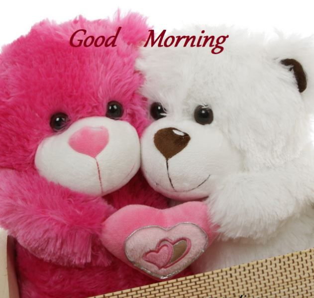 Whatsapp Facebook Good Morning Images Teddy Bear Images Teddy Bear Pictures Bear Wallpaper