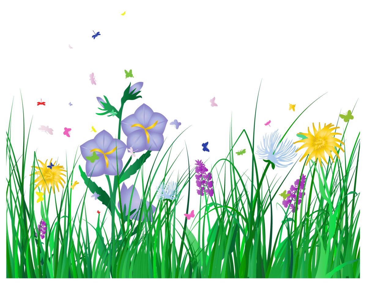 Grass border no background clipart panda free clipart for Grass flower
