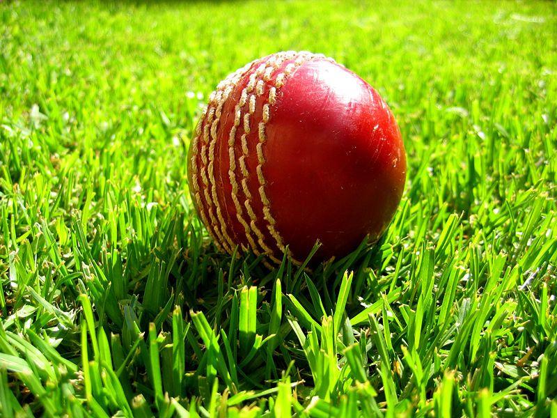 Cricket Lovers Wallpaper Hd