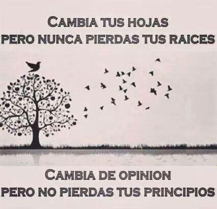 Cambia de opinion pero no pierdas tus principios