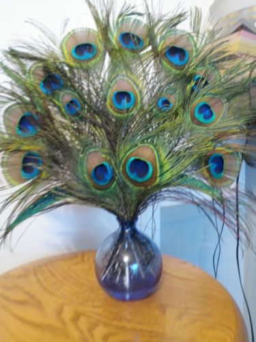 Pea Feather Arrangement
