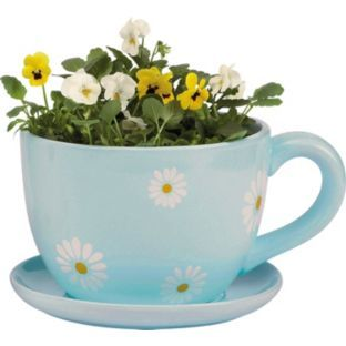 Buy Ceramic Daisy Tea Cup and Saucer Planter at Argos.co.uk - Your ...