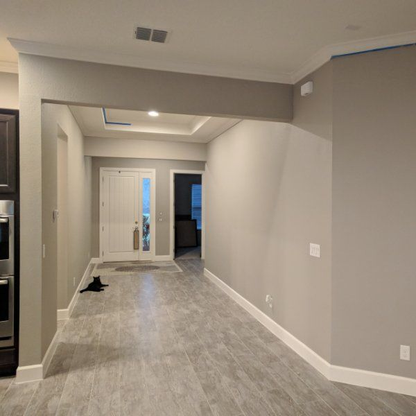 Luxury Painting Basement Walls and Floors