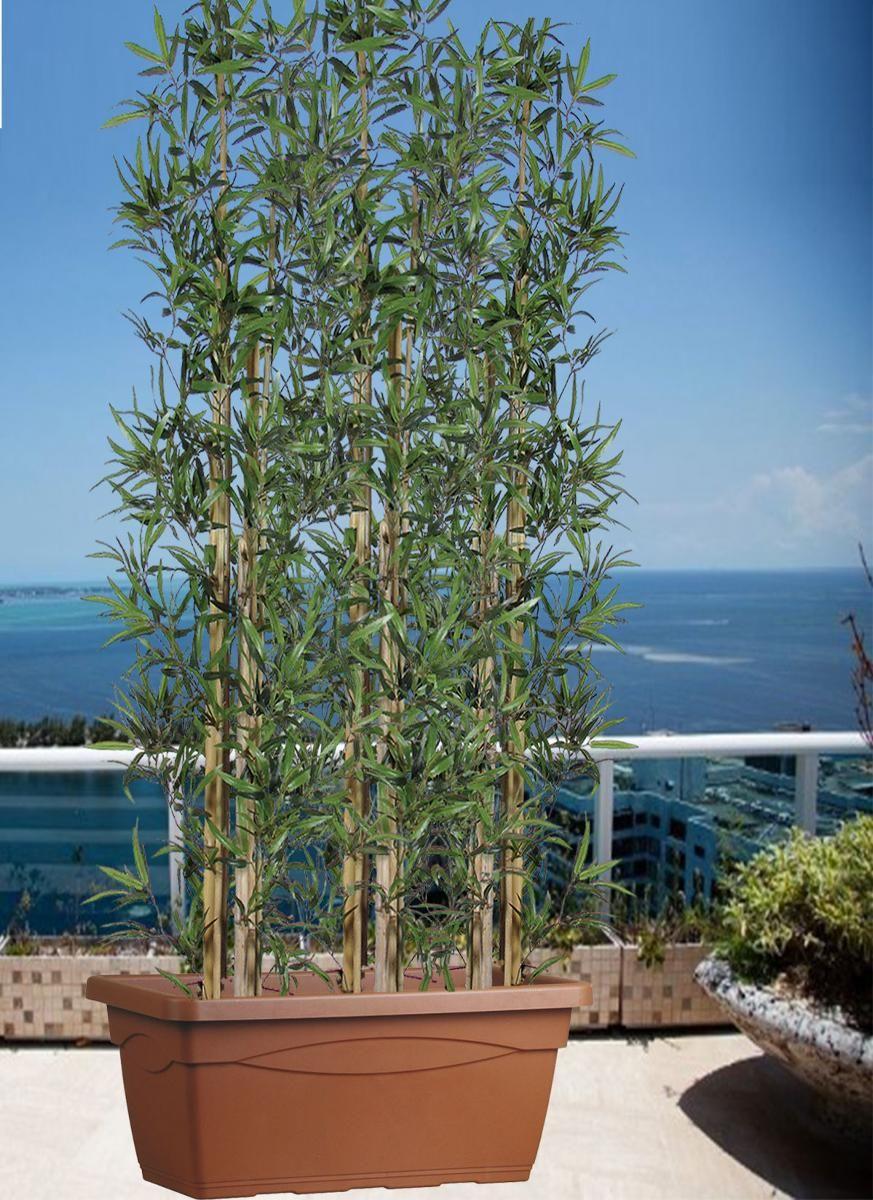 Siepe di Bambu - u.v. rasistant H 200 cassa colore CACAO 80x37x33 Cm ...