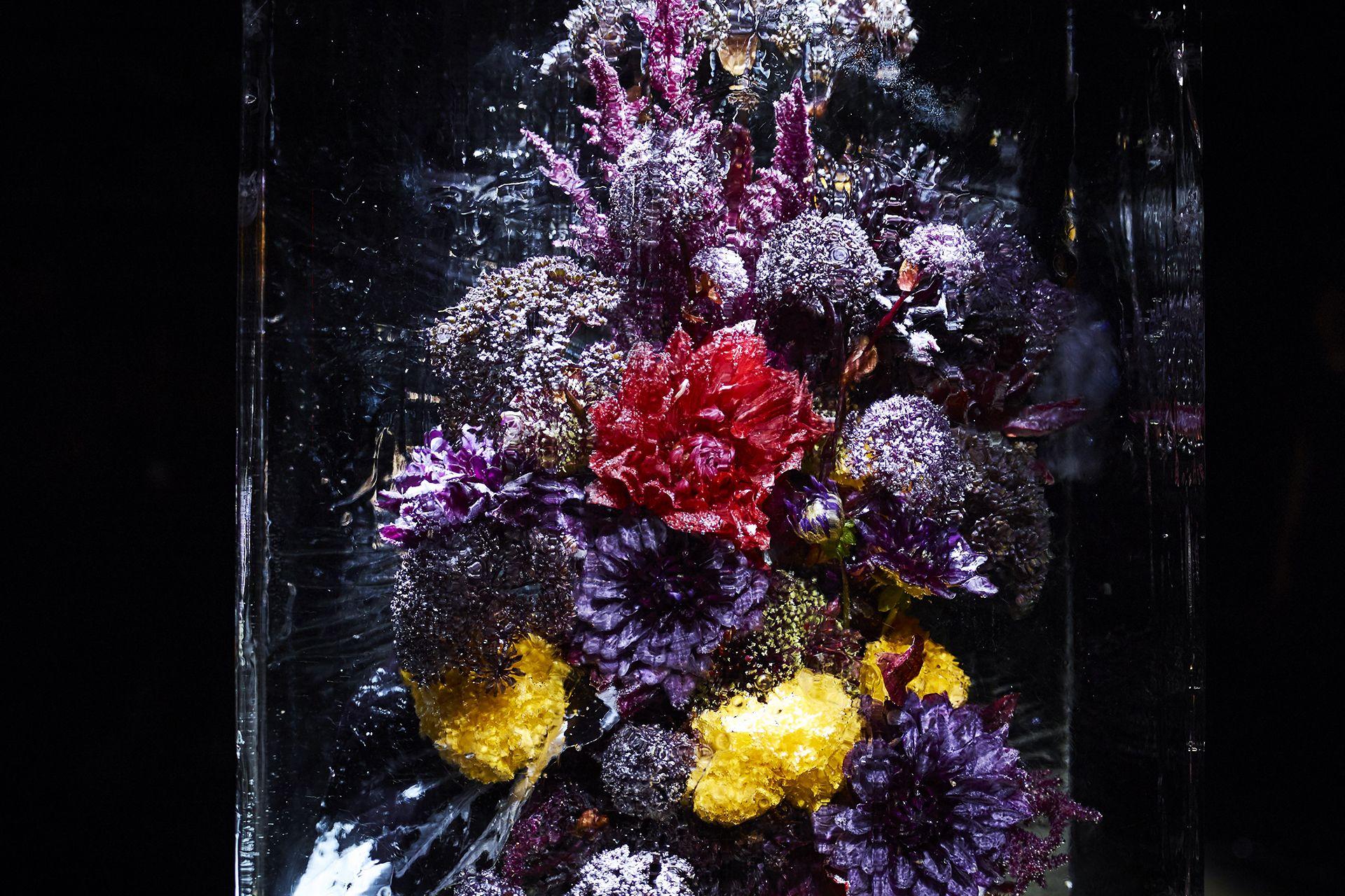 Azuma Makoto « ICED FLOWERS »