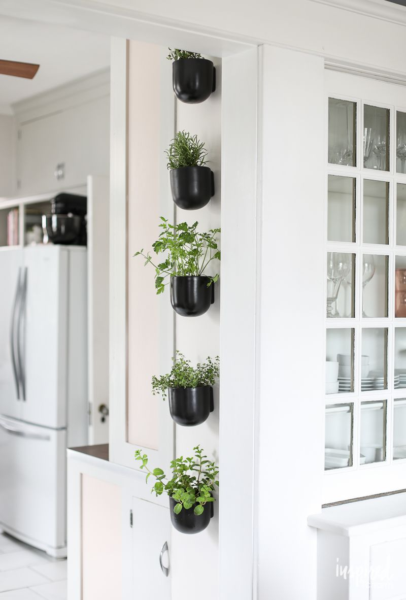 How To Create A Vertical Modern Herb Garden For Your Kitchen Inspired By Charm Herb Garden In Kitchen Herb Garden Wall Herb Garden Indoor Kitchen