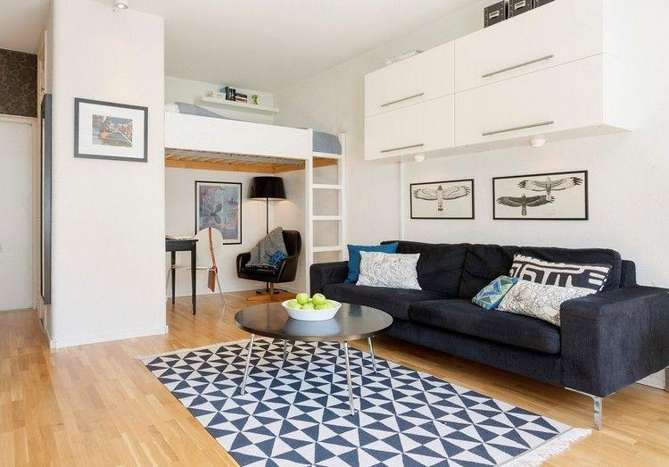 Kleine Einzimmerwohnung Mit Hochbett Für Erwachsene. 1 Zimmer Wohnung  Einrichten Mit Einem Hochbett