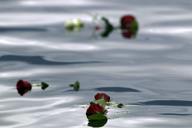 Evil knows no boundaries. May these mourning roses, cast by sympathizers in the lake near the island of Utoya, Norway, on Sunday, July 24, 2011, be a symbol of our country's mourning over the loss of 28 lives in Newtown, CT. May the Lord return soon and save us from the wickedness that is destroying the earth.