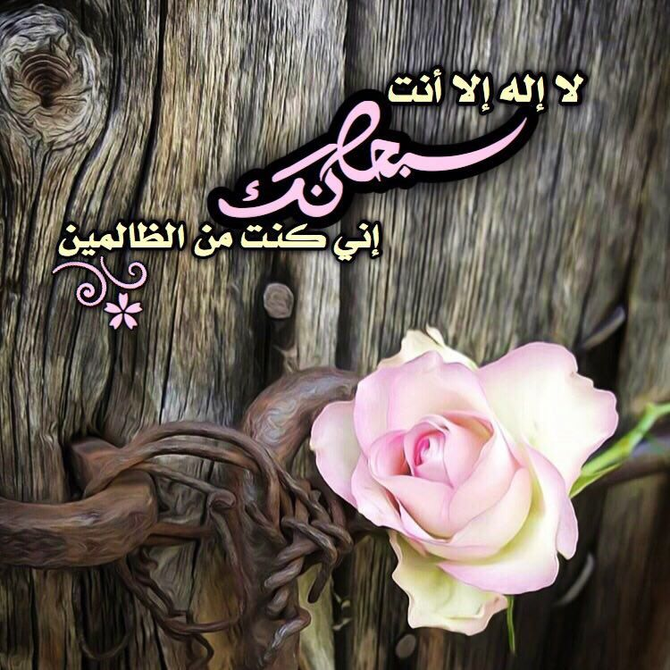 Pin by Hoda on سبحان الله وبحمده... (With images