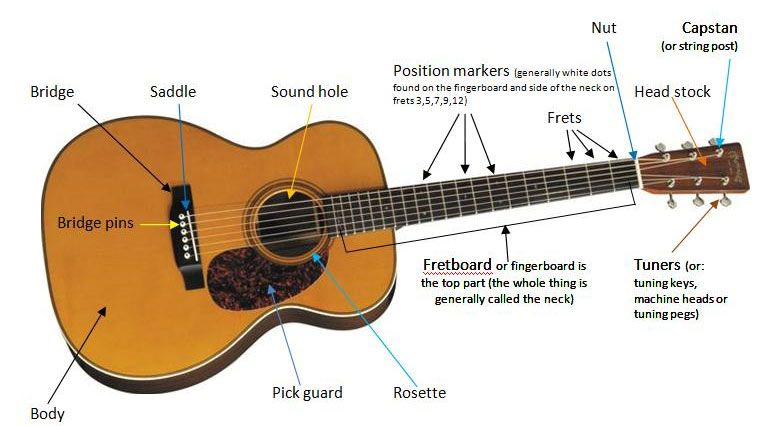 Parts Of The Guitar Guitar Confidence Online Guitar Lessons Guitar Online Guitar Lessons Guitar Lessons