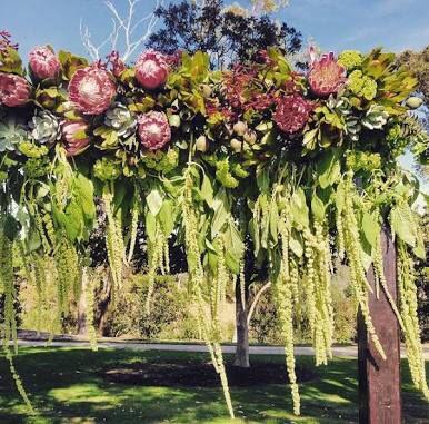 Australian Native Farm Arch Australian Wedding Ideas Wedding