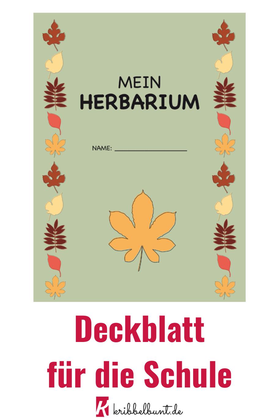 Herbarium Deckblatt Google Suche Pflanzen 2