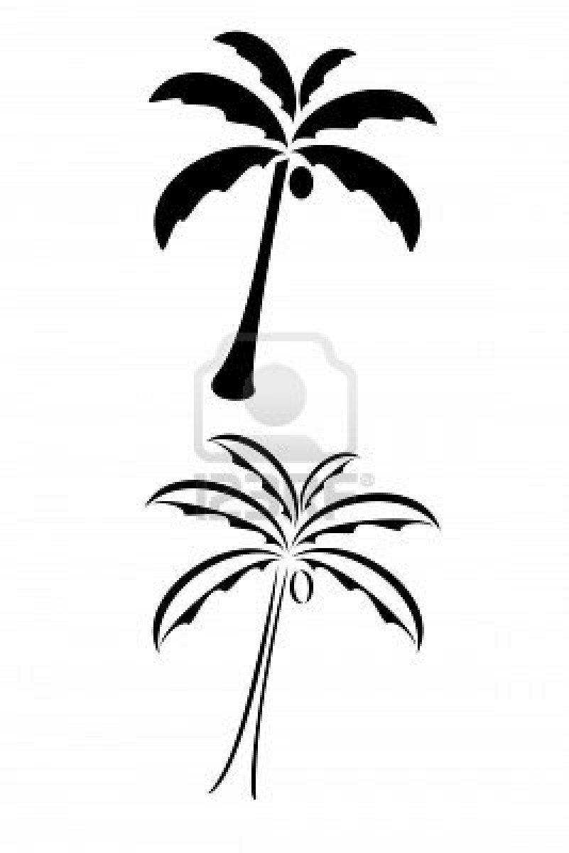 Fashion week White and Black palm trees tattoos for lady