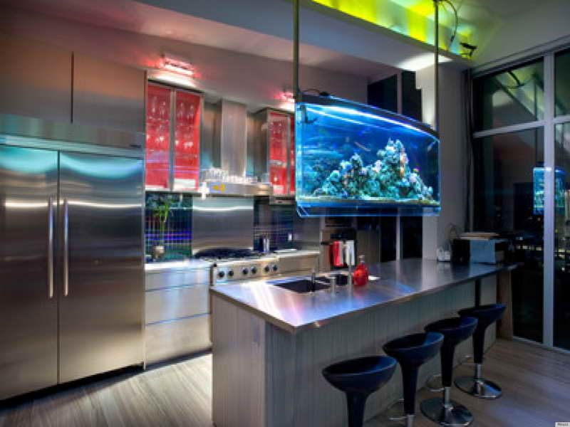 Indoor unique kitchen saltwater aquarium design ideas for Saltwater fish tank