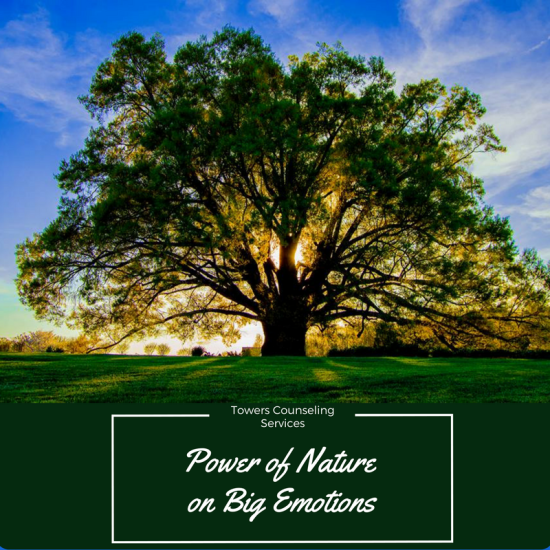 """Explore the """"Power of Nature"""" as a therapeutic tool to help manage anxiety, depression, and other big emotions."""