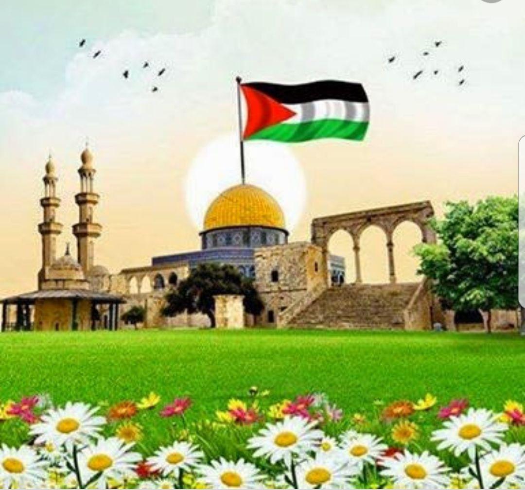 صباح الخير يا وطني صباح الخير يا ارضا عشقناها مدى الزمن صباح نهارك النادي بحضن ربيعك الاخضر صباح Palestine Art Rare Historical Photos Dome Of The Rock