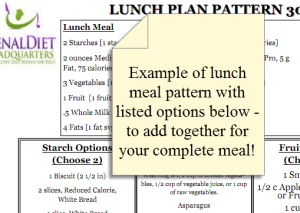 renal diet plans meal plan