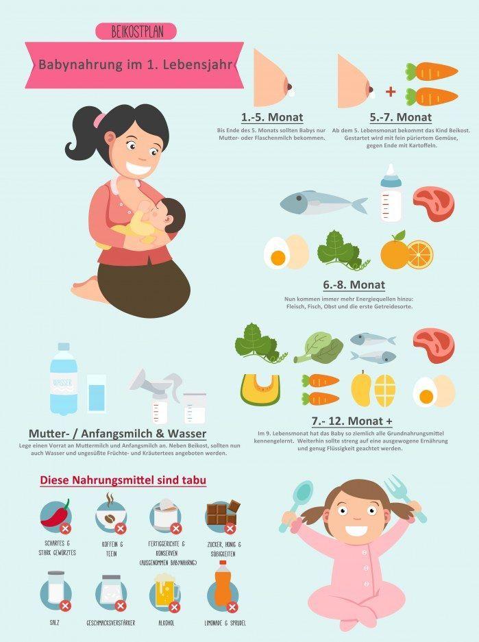 Beikostplan: Die optimale Babynahrung für das erste Jahr | Baby ...