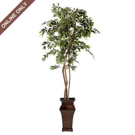 Variegated Ruscus Tree 8 Ft Resin Wicker Furniture