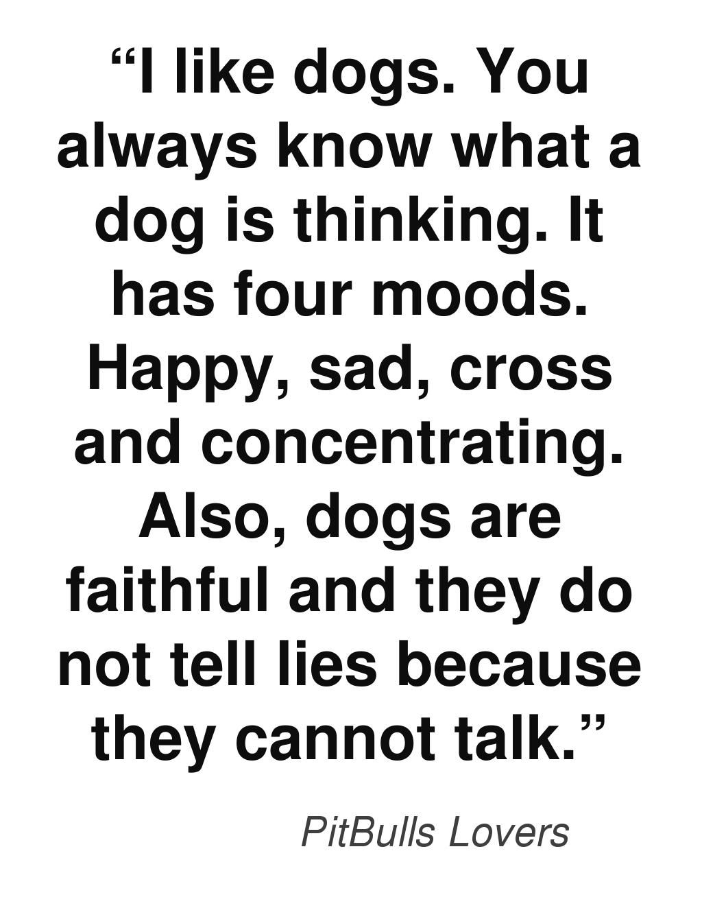 this quote by ― mark haddon the curious incident of the dog in  the curious incident of the dog in the nighttime essay mark haddon the curious incident of the dog in the night time