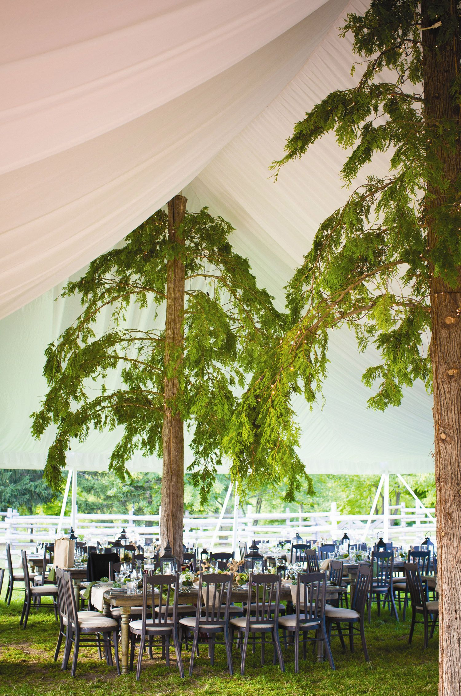 Rustic Tented Reception Decor At Snow Moon Ranch Wedding In Michigan Hitching Post Photography