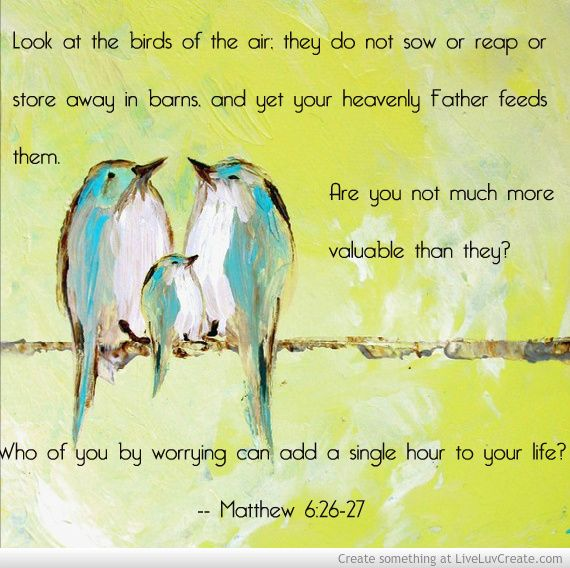 Matthew 6 Picture by Kendall Yoksoulian - Inspiring Photo ...