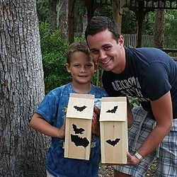 Bat House Building Workshop At Central Florida Zoo And Botanical Gardens  Sanford, FL #Kids
