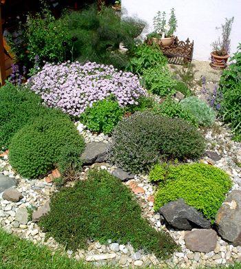 Das Krauterbeet Pflanzen Garten Deko Garten Gestalten