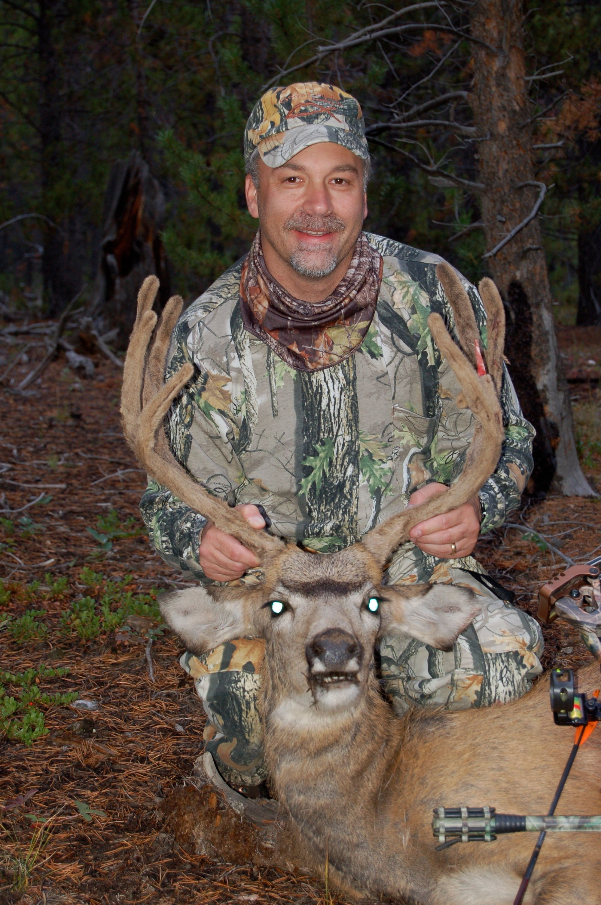 Mule Deer taken near Grandby Colorado | Backcountry