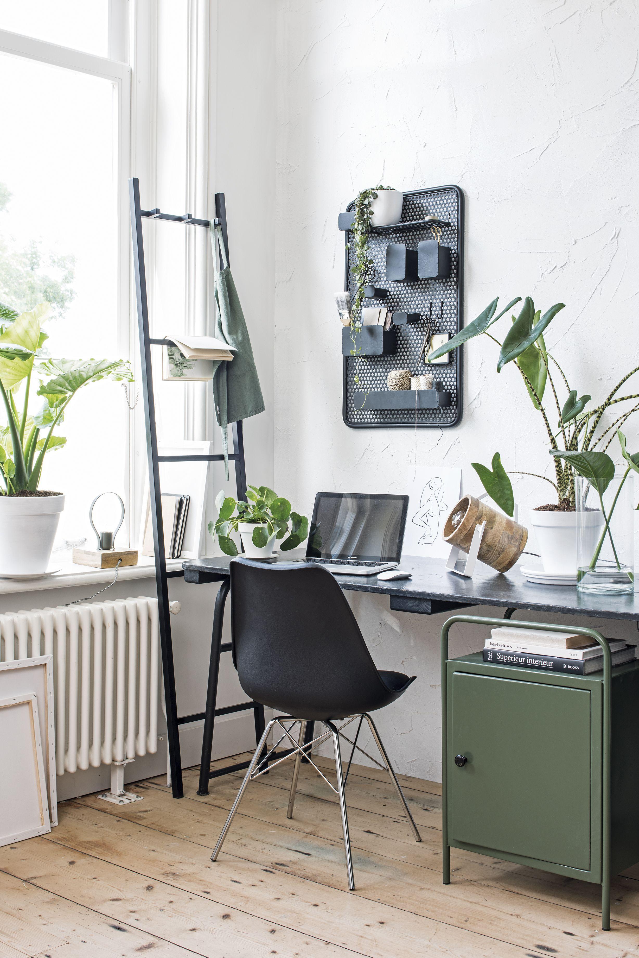 Ook in een werkkamer kunnen kamerplanten niet