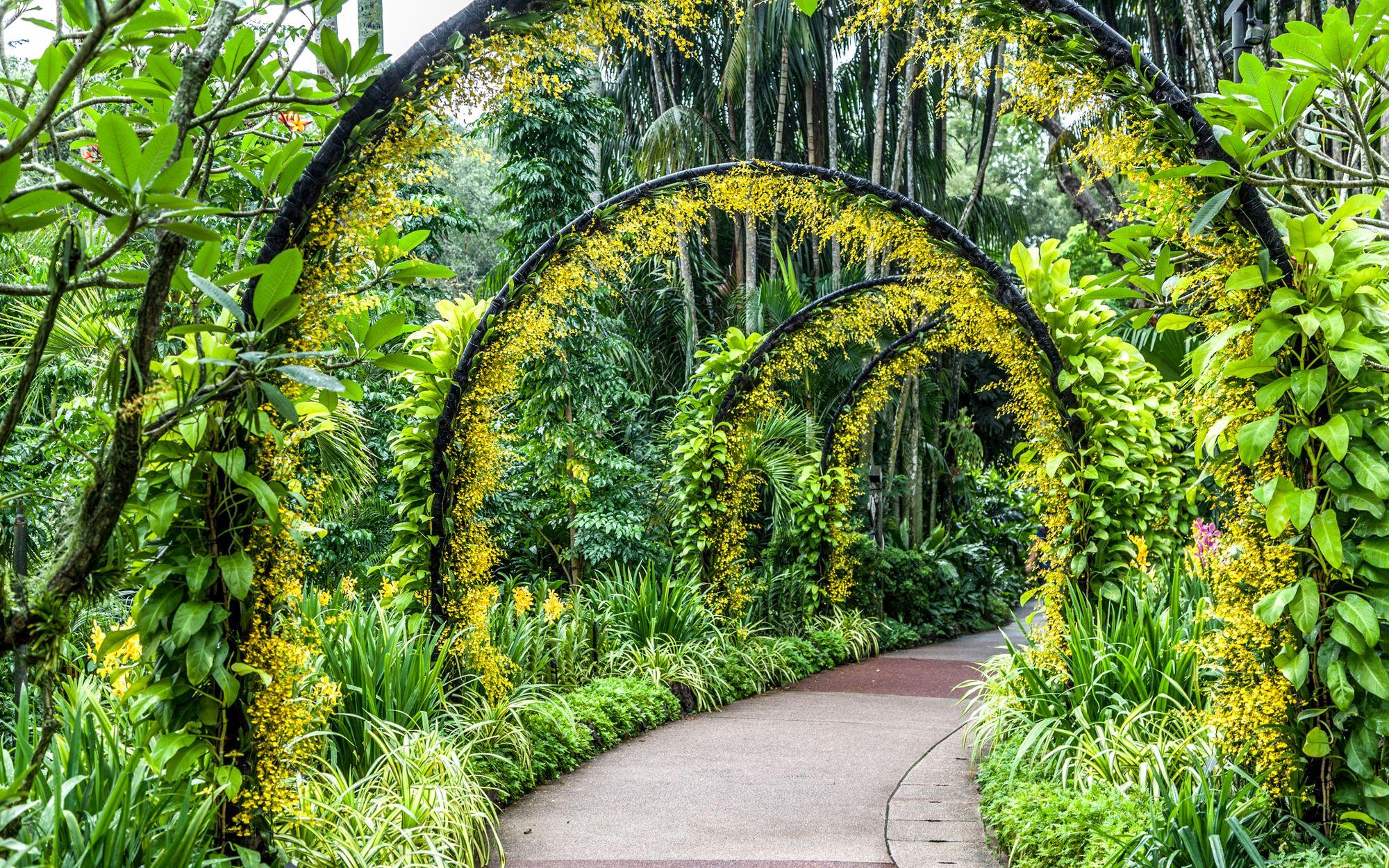 Most Beautiful Botanical Gardens Around The World Singapore Botanic Gardens Gardens Of The World Botanical Gardens