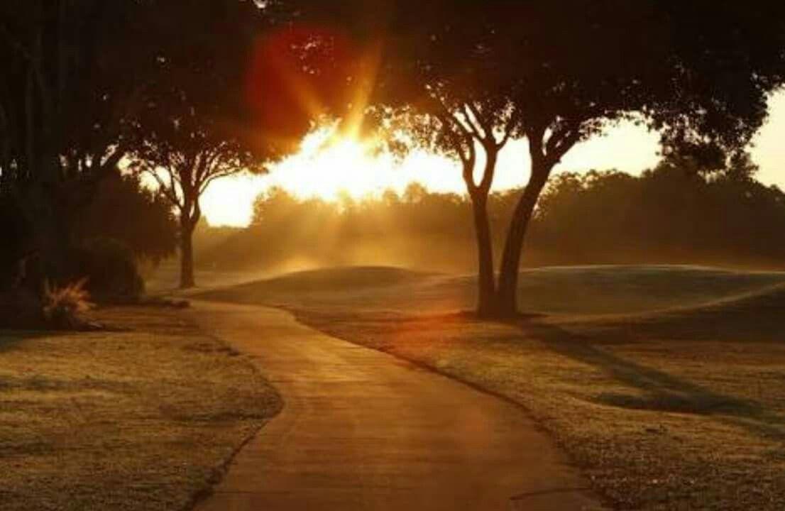 Os caminhos não estão feitos, é andando que cada um de nós faz o seu próprio caminho.  A estrada não está preparada para nos receber é preciso que sejam os nossos pés a marcar o destino, destino ou objetivo ou o que quer que seja. José Saramago