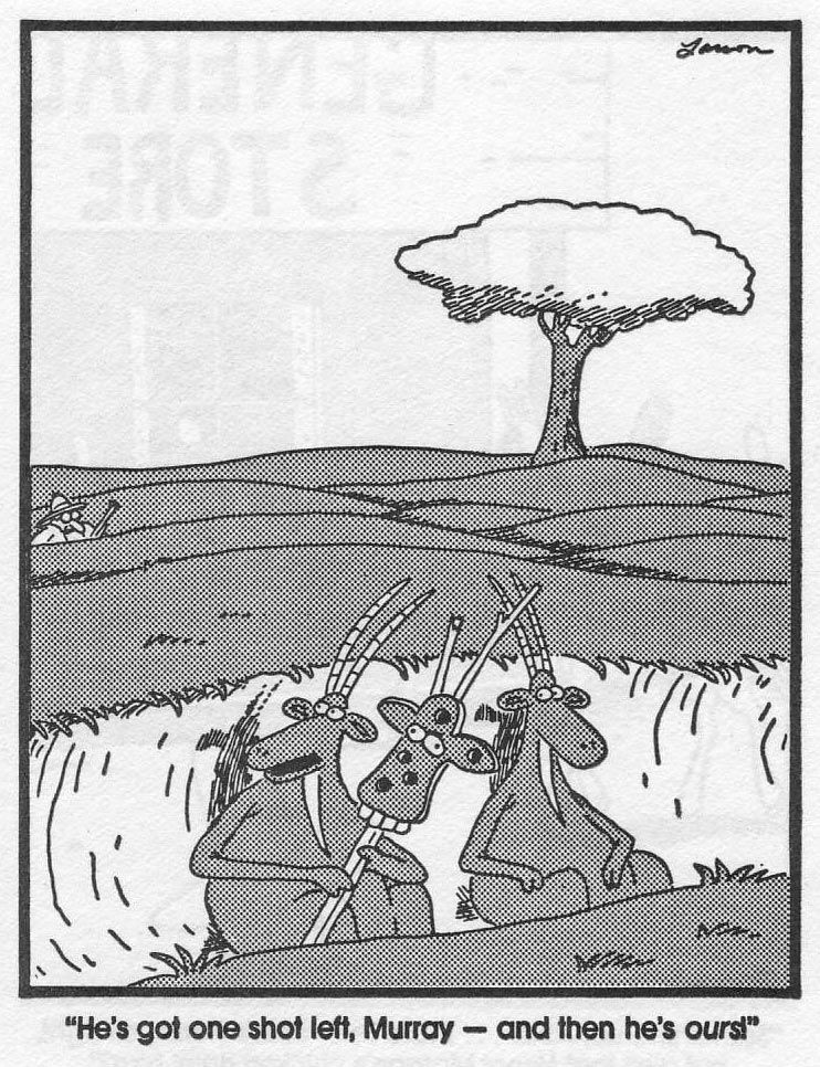 The Far Side by Gary Larson | One shot left