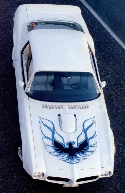 1973 Trans Am, White with blue bird on the hood... But I'd prefer a black interior color instead of white. :)