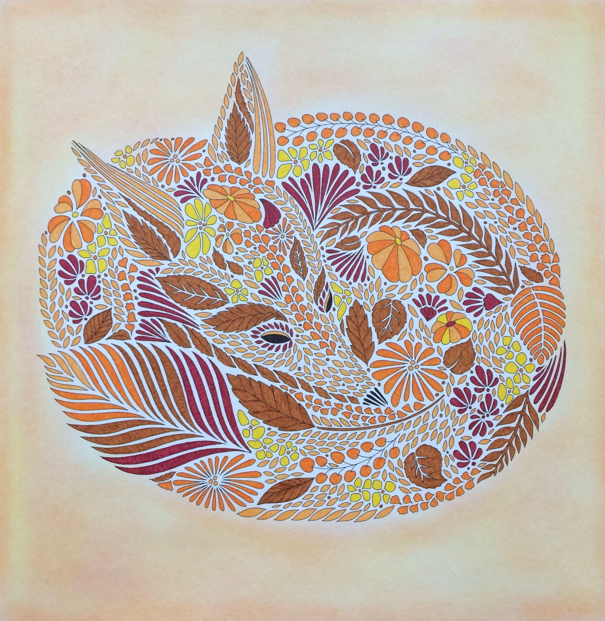 Fox From Millie Marottas Animal Kingdom Coloured By Laura