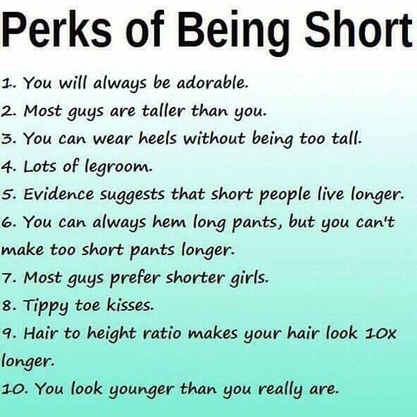 Pin by Sting on Funny Hahas | Short people problems