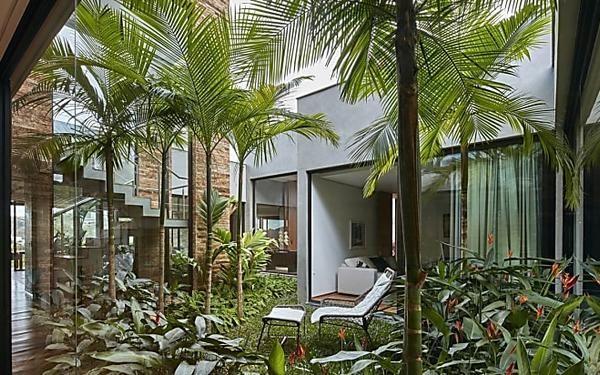 David Guerra nos enseña su casa con un jardín tropical dentro | DECO ...