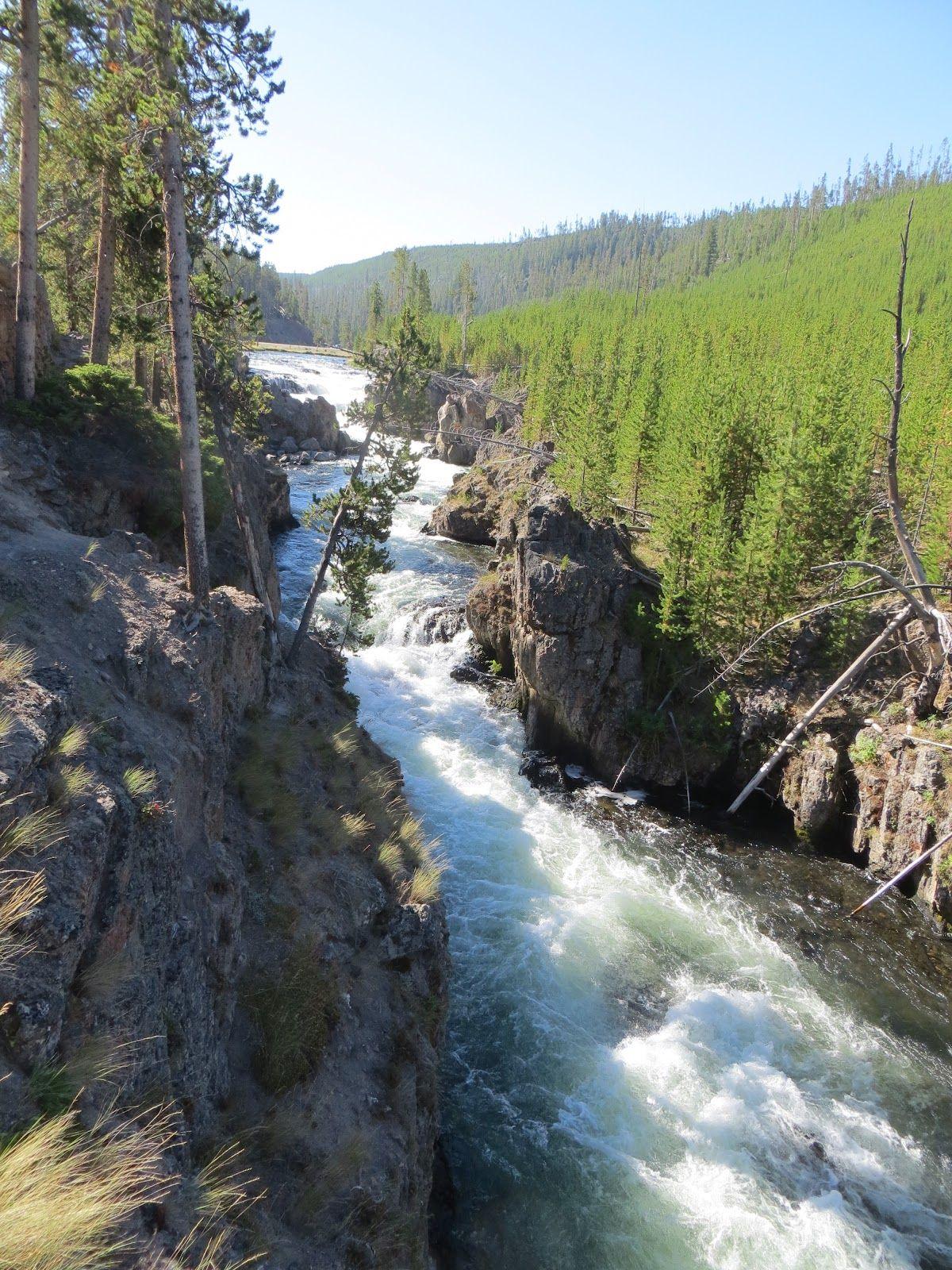 Gibbon+River,+Yellowstone+National+Park,+Wyoming.