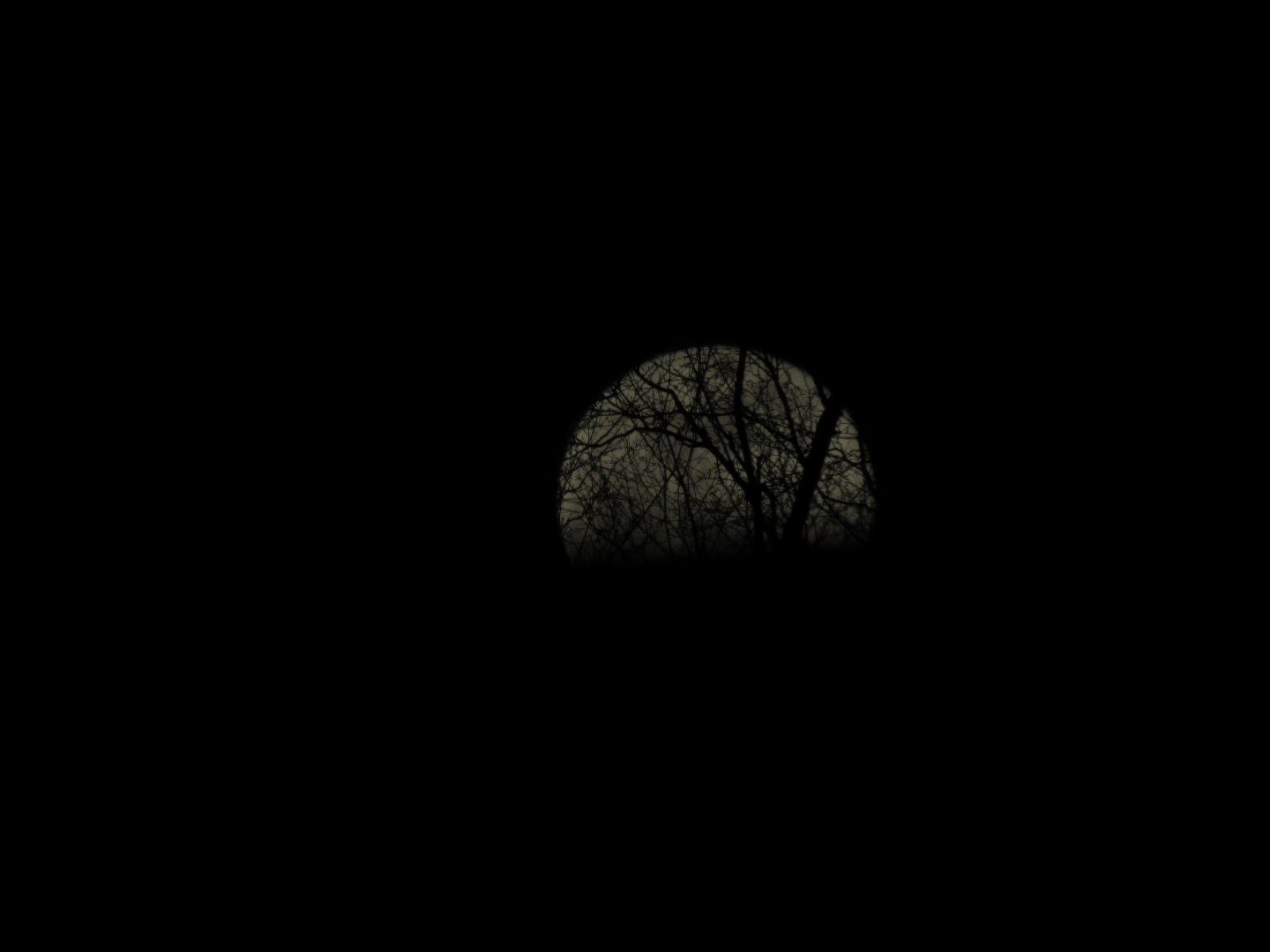 March Full Worm Moon 2015