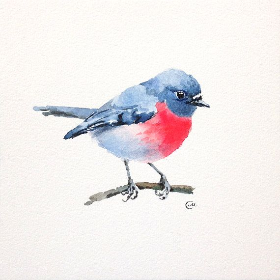 Aquarell Vogel Rosa Robin Original Aquarell Von Cmwatercolors
