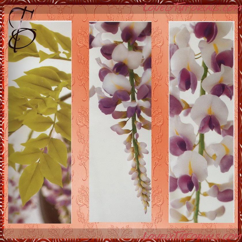 МК лепка Глициния -Gumpaste (fondant, polymer clay) Wisteria (Wistaria) flower making tutorials - Мастер-классы по украшению тортов Cake Decorating Tutorials (How To's) Tortas Paso a Paso