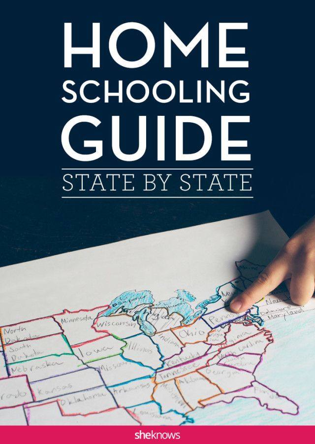 Photo of These are the most homeschool-friendly states in the US (& the least)