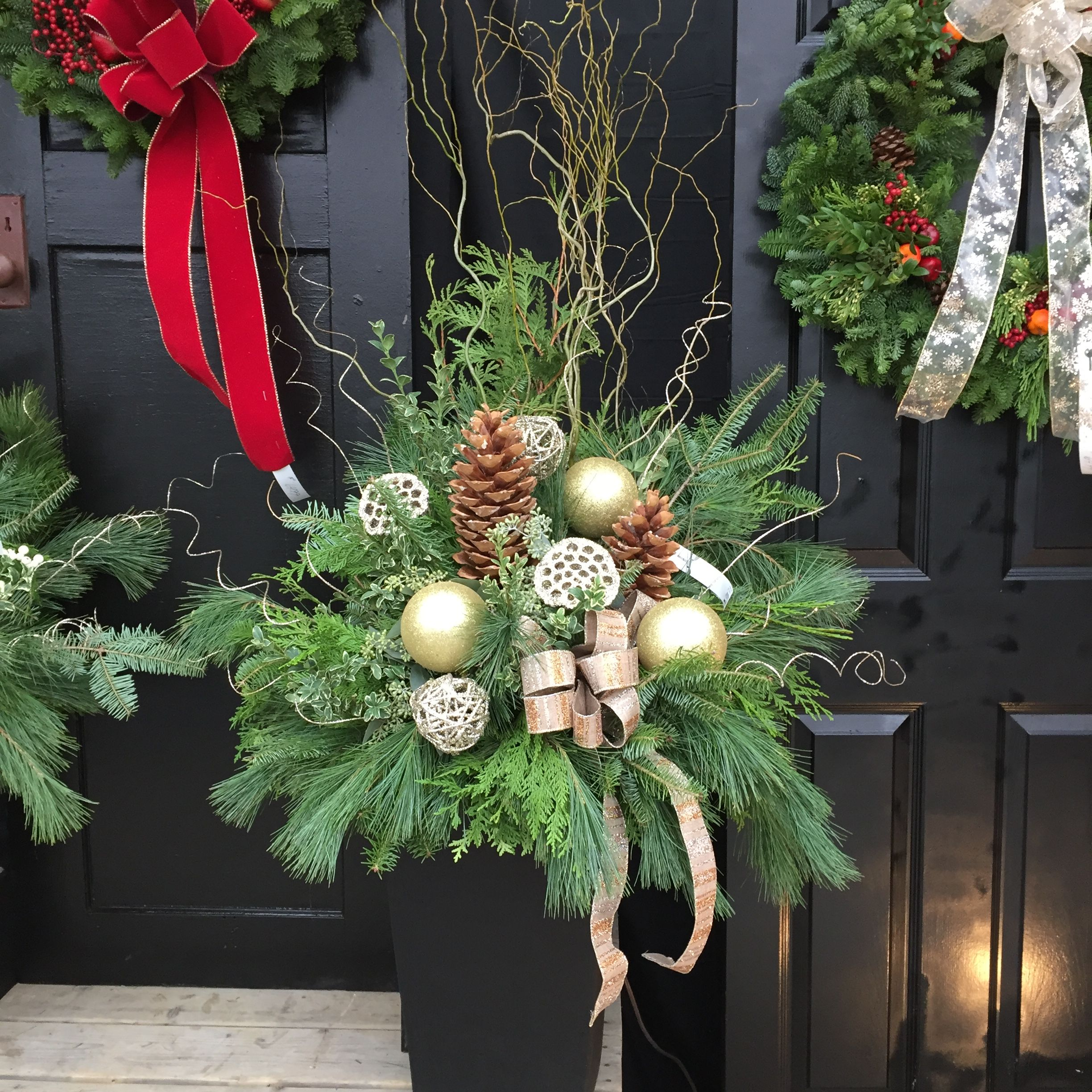 Pin by Van Belle Flowers, Gifts & Garden Centre on Christmas ...
