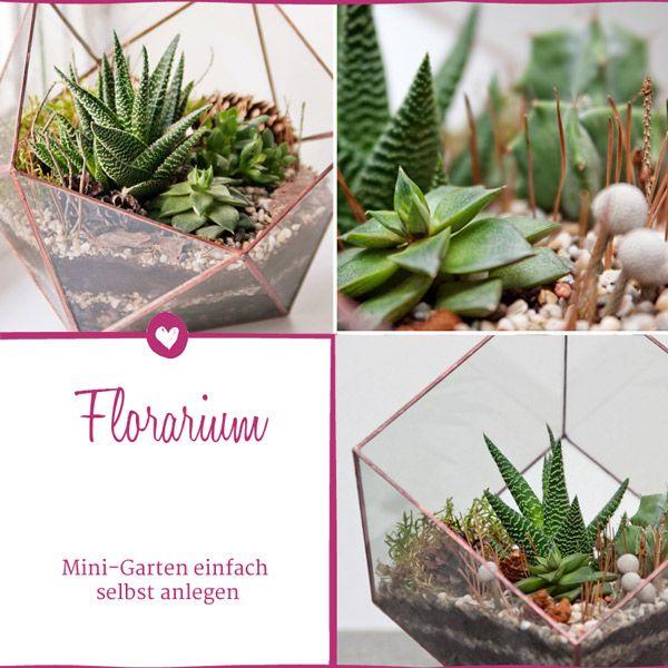 Florarium: So Gestalten Sie Ihr Pflanzen-terrarium | Terrarium Mini Garten Aus Sukkulenten Selber Machen