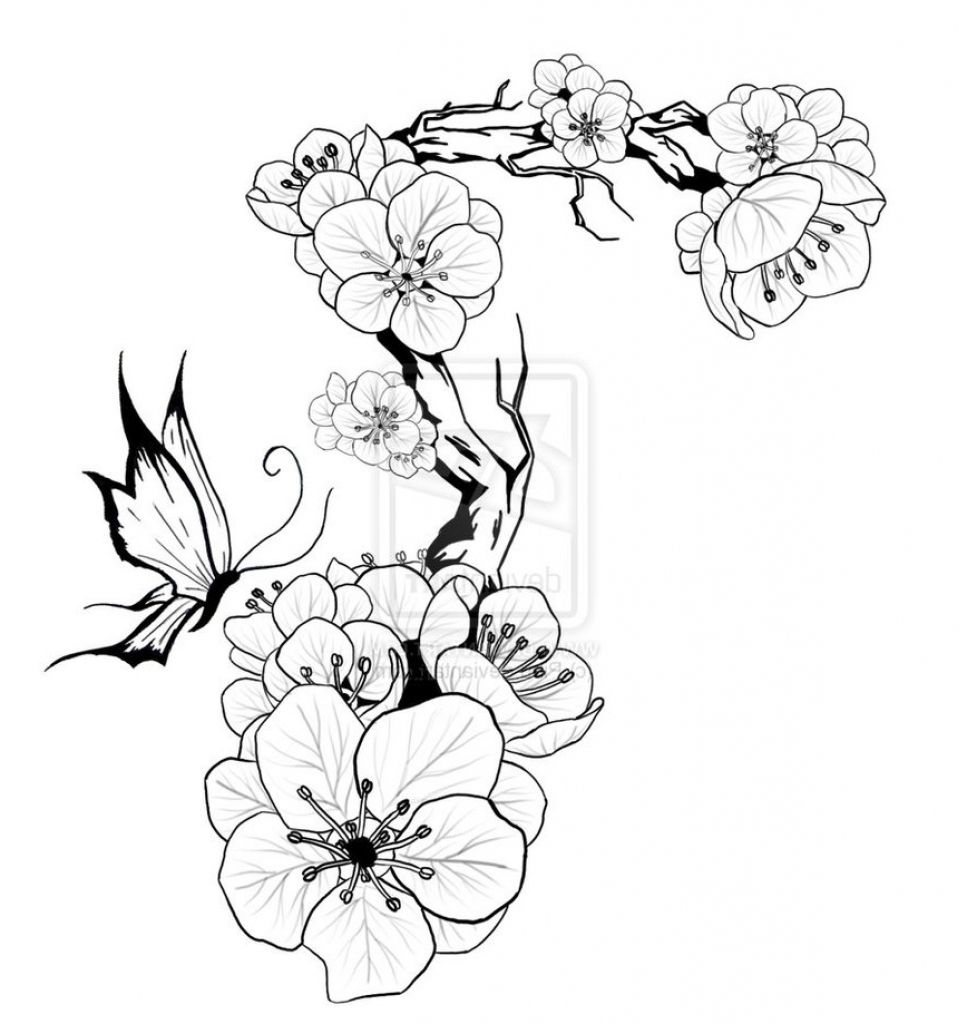 Labeled Cherry Blossom Tattoo Stencil Cherry Blossom Tattoo Stencils Cherry Blossom Tattoo Tattoo Stencils Blossom Tattoo